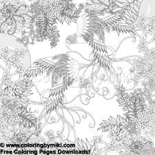 Zentangle Japanese Design Bird Couple Coloring Page 679 Coloring