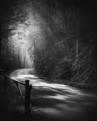 nicholas bell knoxville tn black and white photography landscape photography nature photography awesome black white
