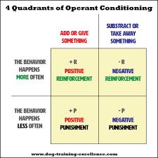Operant Conditioning Using Positive Vs Negative Dog