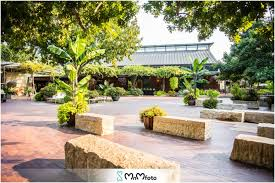 be sure to check the event website listed on our page for your event or call the contact number of the daffodils dallas arboretum botanical gardens