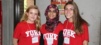york university hoodie. orientation. yorku day. york u day university hoodie h