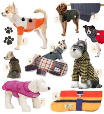 10 Great Dog Coats + DIY Projects – Design*Sponge & Voyagers Winter Coat $57 | 5. Yellow Hooded coat $45 | 6. Witney Coat $75 |  7. Pixley Tweed Coat $210 | 8. Quilted Coat $95 | 9. Porter Wool Coat $58 |  10. Adamdwight.com
