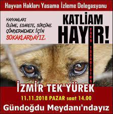 5199 sayılı Hayvanları Koruma Kanunu | İzmir Veteriner Hekimler Odası