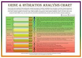 Urine Hydration Analysis Chart