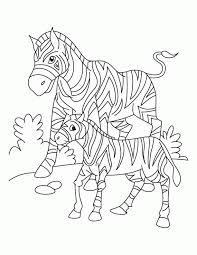 Small Picture African Animals Coloring Pages Coloring Home