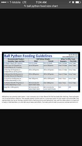 Ball Python Size Chart Feeding Size Chart