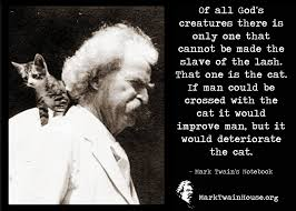 Pin By Stan Godlewski On Quotation Cat Quotes Quotes Mark Twain