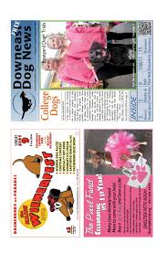Downeast Tide Chart September Issue Of Downeast Dog News By Downeast Dog News