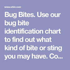 Bug Bites Use Our Bug Bite Identification Chart To Find Out