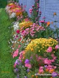 Small Picture Best 20 Wild flower gardens ideas on Pinterest Wild flower