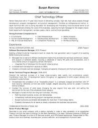 Profiles On Resumes Profile Summary In Resume For Freshers Examples Qualifications