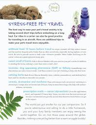 6 Tips For Stress Free Pet Travel Never Give Your Pet