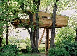 Great Tree Houses - Home Design
