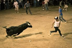rodeo bull charging. Contemporary Rodeo Bull Charging Kid On Rodeo Charging S