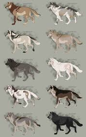 Realistic Wolf Designs Semi Realistic Wolf Adoptables Set 7 Closed By Therbis On
