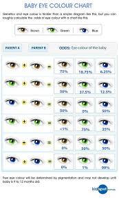 Eye Colour Prediction Chart Neat Eye Color Prediction Chart Eye Color Chart Genetics