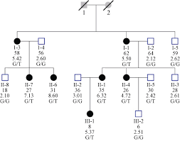 Pedigree Chart Maker Circles And Squares Pedigree Chart Of Proband 3 Squares Indicate Male Family