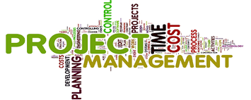 Seek Quality Strategic and Project Management Assignment Help