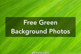 Free Green Background 1000 Beautiful Green Background Photos Pexels Free Stock