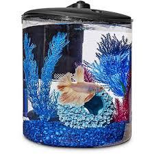 betta fish tanks. Plain Tanks Imagitarium Cylindrical Betta Fish Desktop Tank Kit In Tanks E