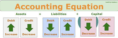 accounting equation audit by auditors