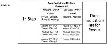 Asthma Severity Classification Chart Check Out The Image
