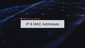 Networking Basics: How IP and Mac Addresses Work