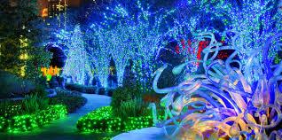 Botanical Gardens Nights Of Lights Garden Lights Atlanta Botanical Promo Code
