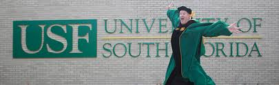 usf department of communication department of communication