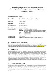 Business Brief Example 14 Project Brief Examples Pdf Examples
