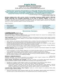 Insight Resume Examples Resume Samples Program Finance Manager FPA Devops Sample 1