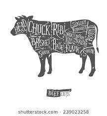 beef cow outline.  Outline American Cuts Of Beef Vintage Typographic Handdrawn Butcher Scheme On Beef Cow Outline N
