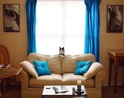 Living Room Blue Inspiring Design Ideas Blue Curtains Living Room All Dining Room