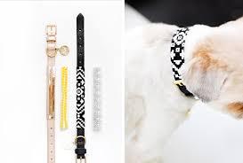 dog collar sleeves