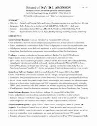 Resume Format For Experienced Software Engineer Tomyumtumweb Com