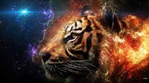 Fire Tiger Images 3d - Novocom.top