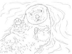 Small Picture Subjects Pokemon Sea Otter Coloring Page Coloring Pages sea