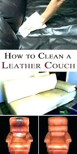 how to get dog out of a leather