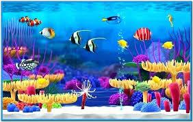 Fish Tank Wallpaper Fish Aquarium Screensaver Free Download Windows