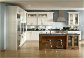kitchen stock cabinets types plan kitchen cabinets home depot inspiring white stock redoing ideas corner