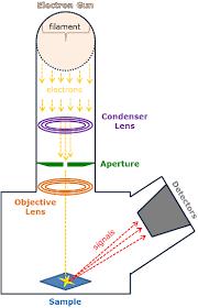 Types Of Microscopes Chart Scanning Electron Microscopy Instrumentation Analysis