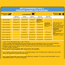 Fromm Puppy Feeding Chart 24 Gigantic Influences Of Pedigree Dog Food Feeding