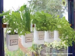 how to grow a herb garden. Growing Herbs In An Indoor Herb Garden How To Grow A