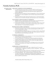 chronological resume sample marketing business development    example business development