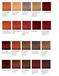 28 Albums Of Shades Of Auburn Hair Color Chart Explore