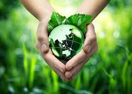 save earth essay essay on save earth for children and students