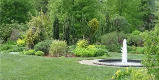 large yard planting plan landscaping