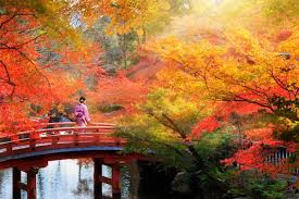 10 Best Places to See Autumn Leaves in Japan - Japan Rail Pass