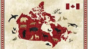 Stonehenge - Oh Canada 4 - Map Panel - Sew Sisters Online Store ... & Stonehenge - Oh Canada 4 - Map Panel Adamdwight.com