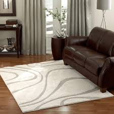 Add a contemporary look to your room with this stylish power-loomed shag rug  from